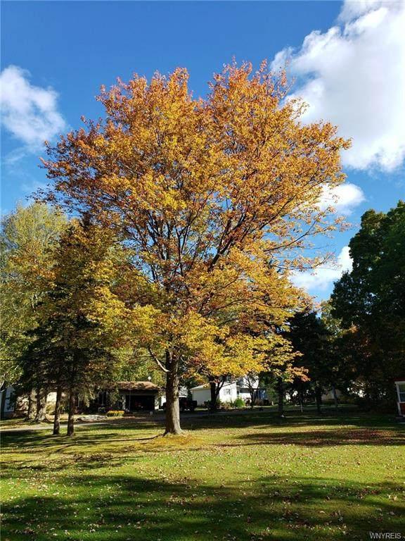 0 South Lane, Evans, NY 14006 (MLS #B1314216) :: TLC Real Estate LLC
