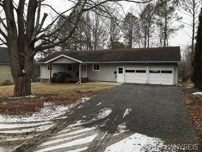 100 N 5th Street, Allegany, NY 14706 (MLS #B1324262) :: BridgeView Real Estate Services