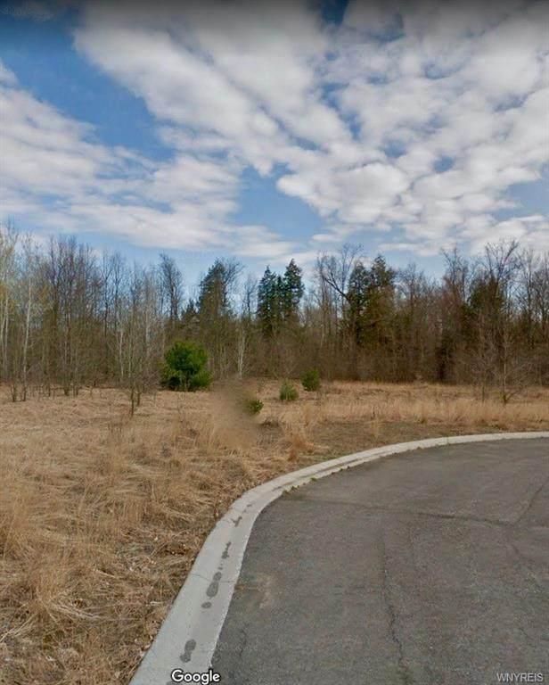 9129 Ashley Landing, Clay, NY 13041 (MLS #B1331815) :: MyTown Realty