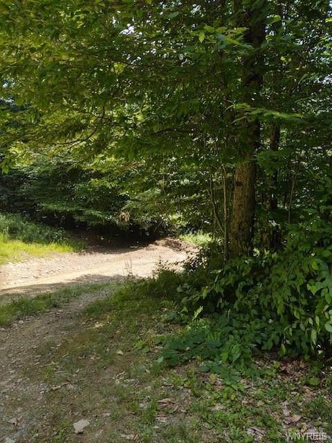 V/L Forest Glen, Hinsdale, NY 14743 (MLS #B1345602) :: TLC Real Estate LLC
