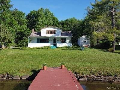 242 W Shore Road, Cuba, NY 14727 (MLS #B1348235) :: BridgeView Real Estate