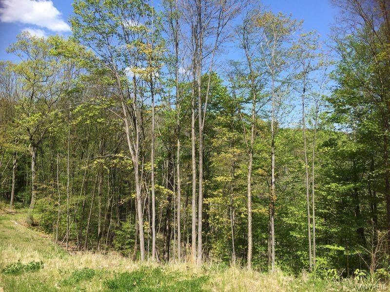 Lot 20 Westmont Ridge - Photo 1