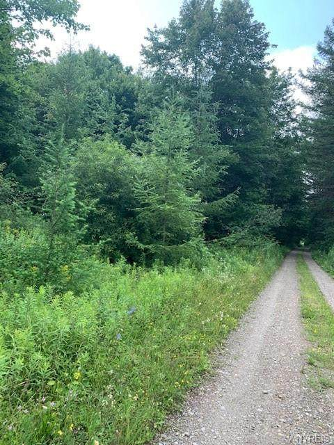 0 Clare Valley Road, Franklinville, NY 14741 (MLS #B1354145) :: 716 Realty Group