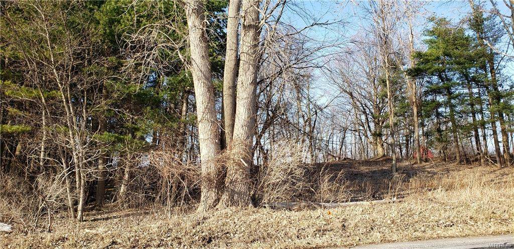 2881 Pratt Road - Photo 1