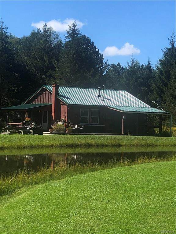 3772 Bryant Hill Road, Franklinville, NY 14737 (MLS #B1367731) :: BridgeView Real Estate