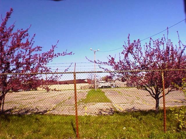 580 Oak Street, Rochester, NY 14608 (MLS #R1070928) :: Robert PiazzaPalotto Sold Team