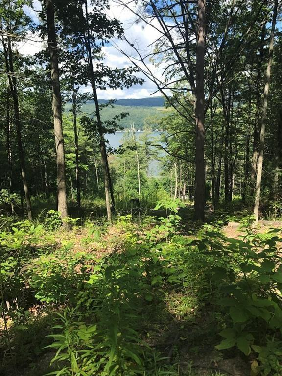0 State Route 54, Wayne, NY 14893 (MLS #R1098989) :: The Chip Hodgkins Team