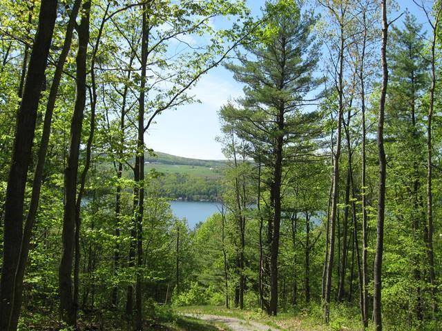 11708 State Route 54, Wayne, NY 14840 (MLS #R1126755) :: The Chip Hodgkins Team