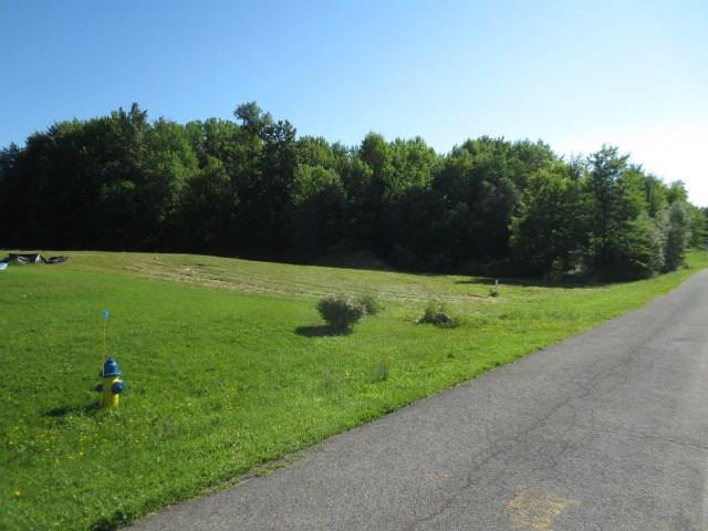 0 Lot 3 Greenfield Drive, Marion, NY 14505 (MLS #R1134785) :: Updegraff Group