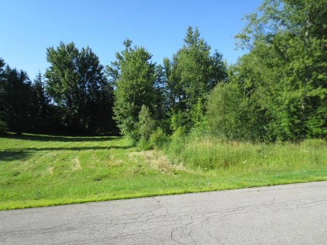 0 Lot A Greenfield Drive, Marion, NY 14505 (MLS #R1134790) :: Updegraff Group