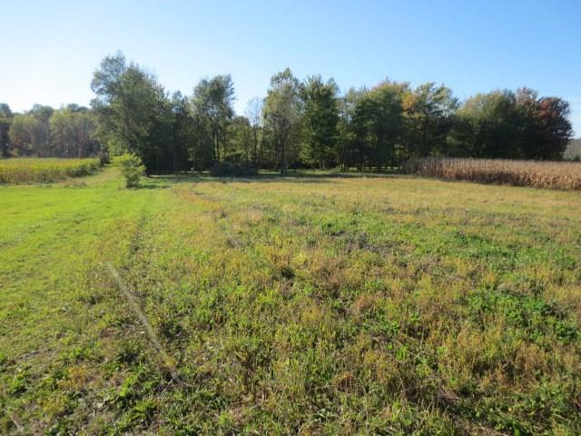 0 Lot 14 & 14A Greenfield Drive, Marion, NY 14505 (MLS #R1135362) :: Updegraff Group