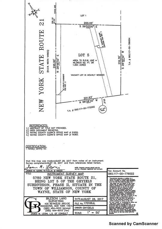 5780 State Route 21, Williamson, NY 14589 (MLS #R1151702) :: Updegraff Group