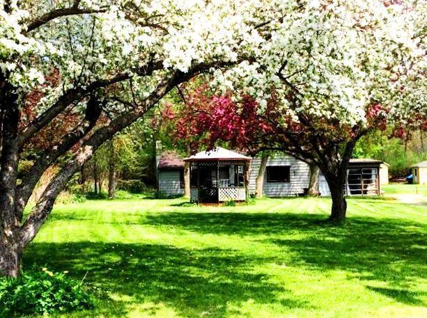 3630 Lamoka Lake Road, Tyrone, NY 14815 (MLS #R1153069) :: Updegraff Group
