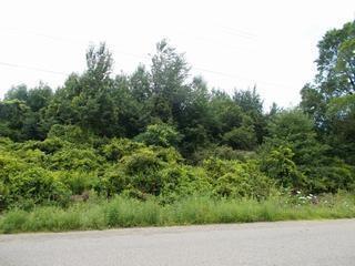0 Route 20, Pomfret, NY 14063 (MLS #R1155738) :: The Rich McCarron Team