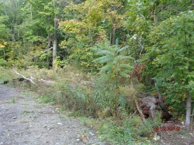 7578 Martin Wright Road, Westfield, NY 14787 (MLS #R1157645) :: BridgeView Real Estate Services