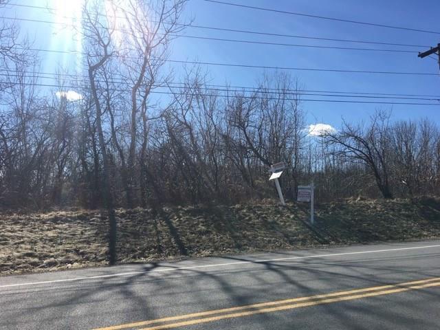 Lot 4 Aldridge, Victor, NY 14564 (MLS #R1160468) :: The CJ Lore Team | RE/MAX Hometown Choice
