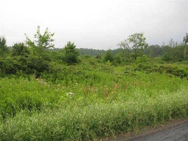 Lot #7 Wright Road, Pulteney, NY 14840 (MLS #R1168343) :: BridgeView Real Estate Services