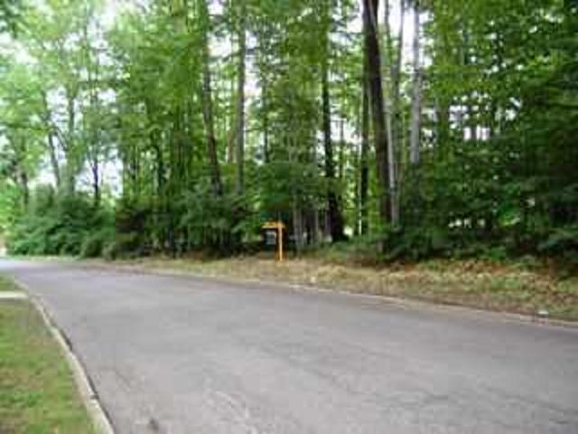 Warwick Rd Warwick Rd Lot 1, Ellicott, NY 14701 (MLS #R1175417) :: BridgeView Real Estate Services