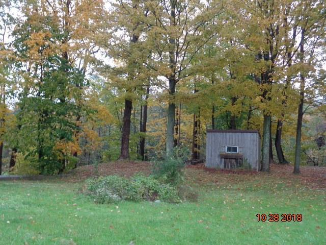 10138 Creek Road, Sheridan, NY 14062 (MLS #R1187633) :: The Chip Hodgkins Team