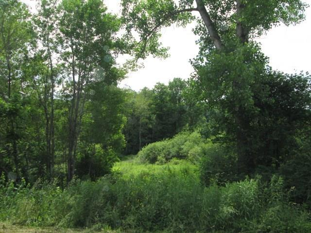 0 Old State Road, Allen, NY 14709 (MLS #R1204948) :: Updegraff Group