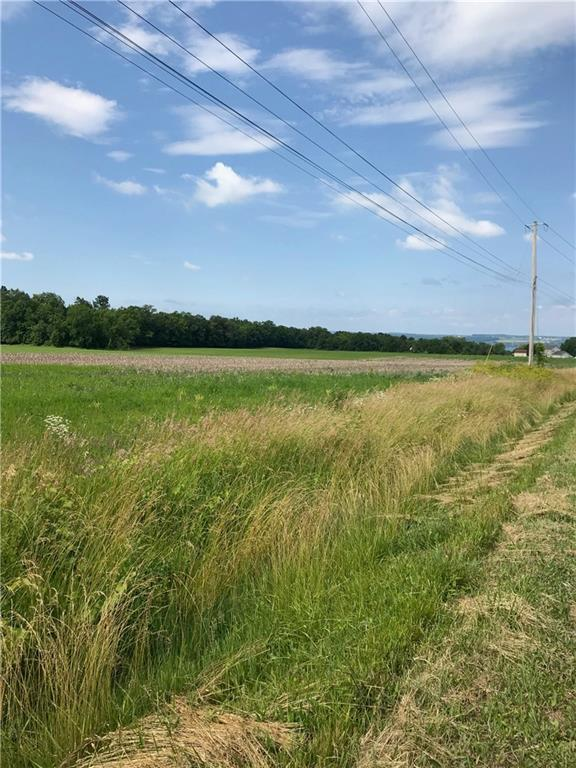 00 Yale Farm Road Lot A, Varick, NY 14541 (MLS #R1207500) :: Robert PiazzaPalotto Sold Team