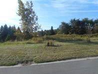 650 Rookery Way, Walworth, NY 14502 (MLS #R1227682) :: MyTown Realty