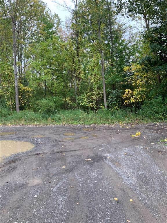 1780 Apple Hollow Lane, Hamlin, NY 14464 (MLS #R1230129) :: Updegraff Group