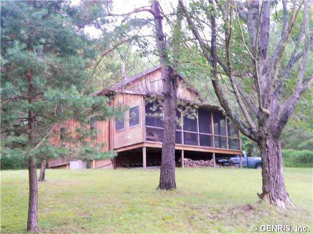 5155 Wagner Hill Road W, Wheeler, NY 14809 (MLS #R1231024) :: 716 Realty Group