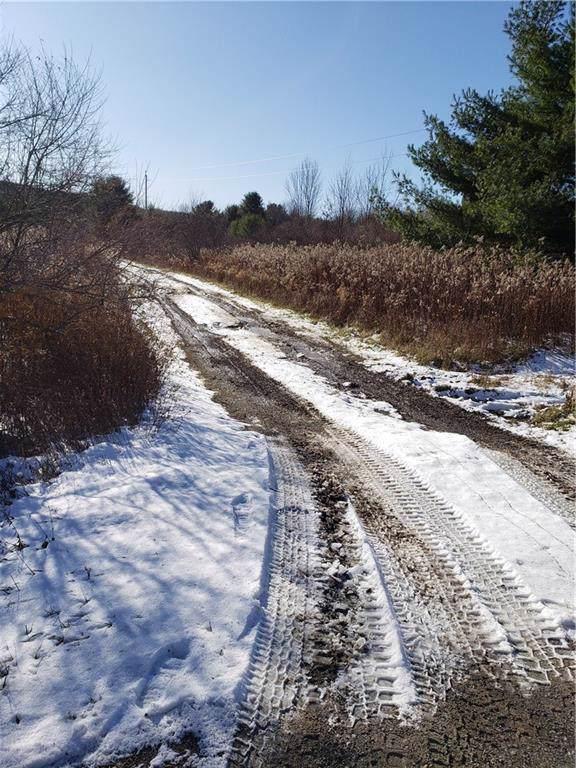 0 Cayward Road S, Prattsburgh, NY 14873 (MLS #R1237870) :: MyTown Realty
