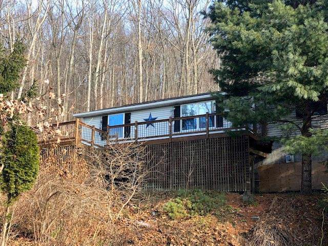 7373 County Route 74, Prattsburgh, NY 14873 (MLS #R1240280) :: BridgeView Real Estate Services