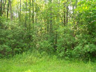 0 Hunt Road, Busti, NY 14750 (MLS #R1251311) :: BridgeView Real Estate Services