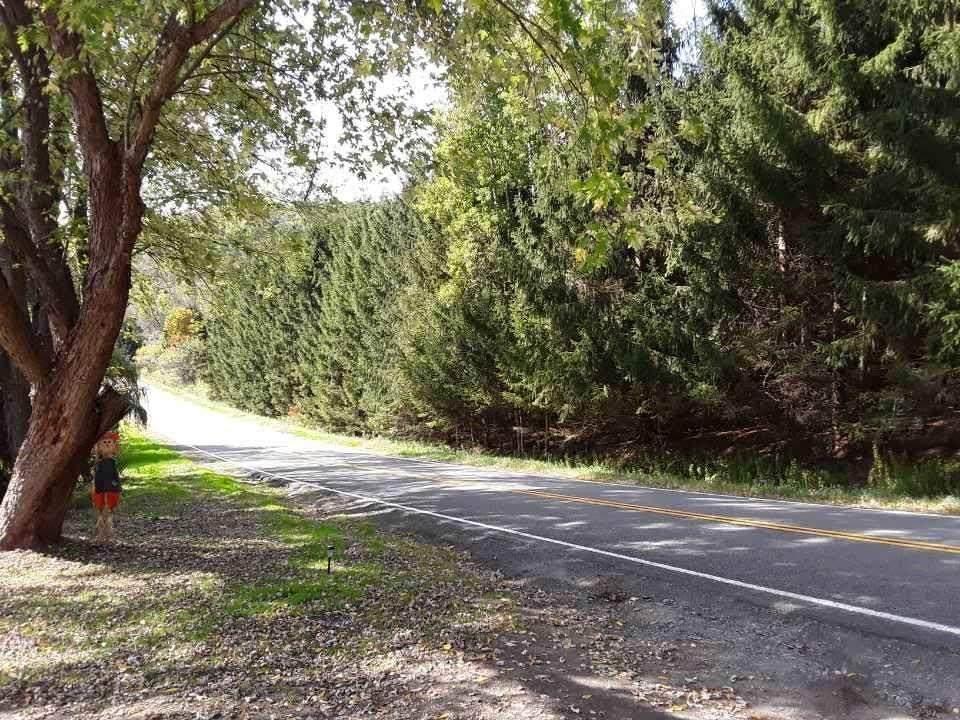 4334 Five Mile Road - Photo 1