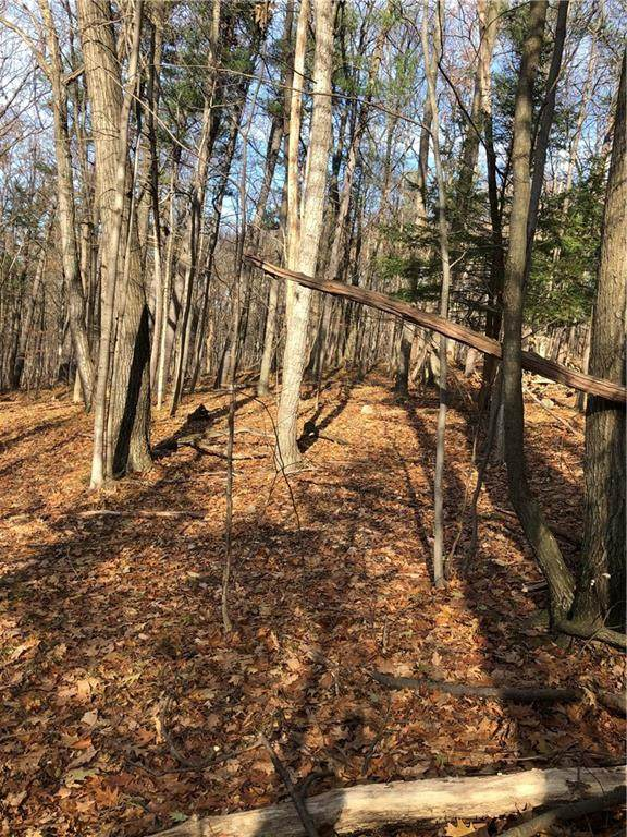 0 State Route 64, Bristol, NY 14424 (MLS #R1253551) :: 716 Realty Group