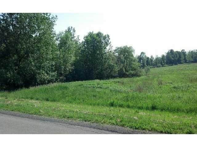 Lot 7 and 8 S Manning Road, Clarendon, NY 14470 (MLS #R1255935) :: MyTown Realty