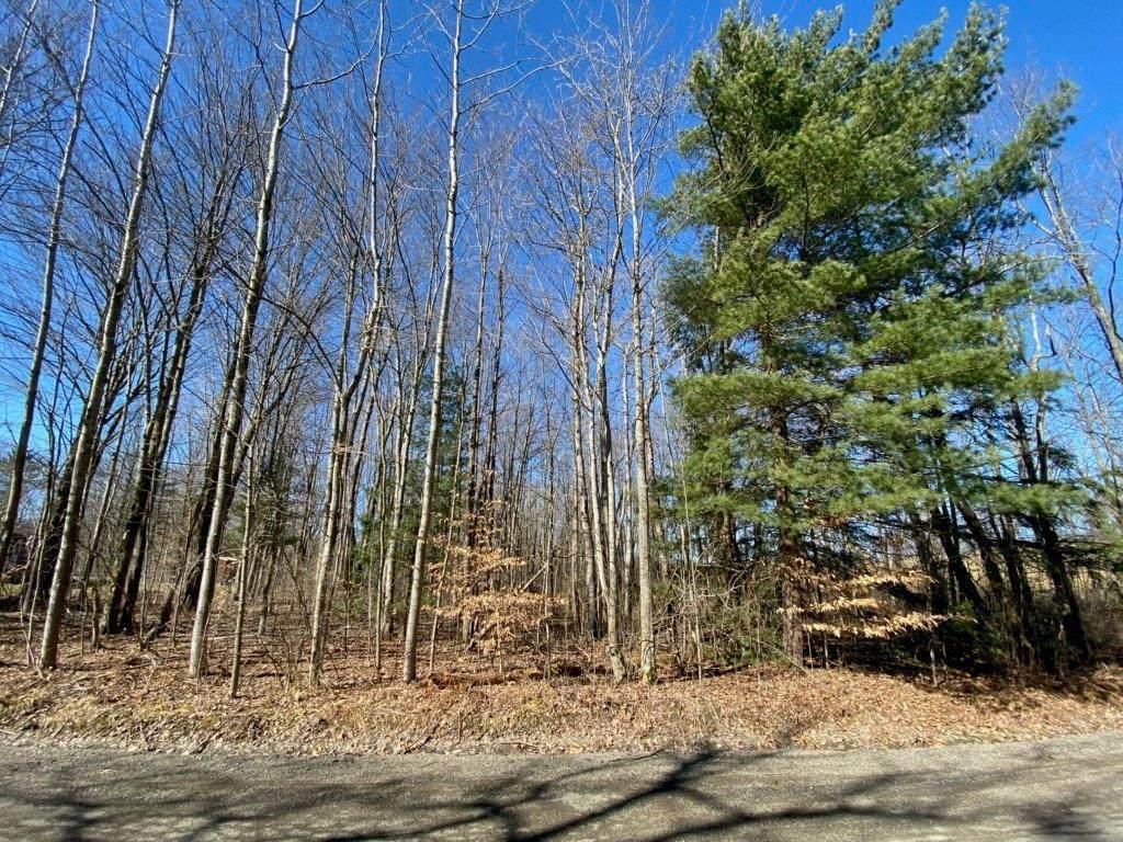 4631 Loucks Pond Road - Photo 1