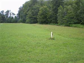 0 Lot 3 Greenfield Drive, Marion, NY 14505 (MLS #R1265465) :: 716 Realty Group