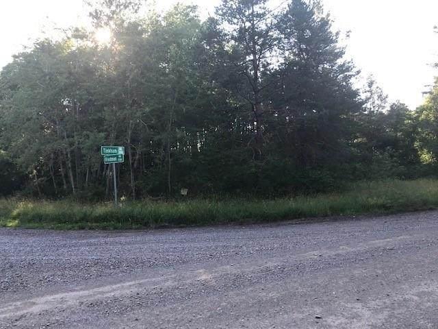 1661 Friedman Road - Photo 1