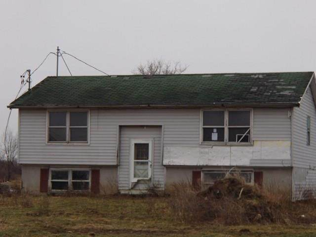 44600 Barnes Settlement Road, Alexandria, NY 13679 (MLS #R1275874) :: 716 Realty Group