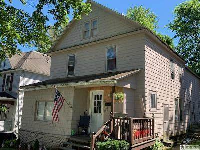 23 Dearing Avenue, Jamestown, NY 14701 (MLS #R1279325) :: BridgeView Real Estate Services