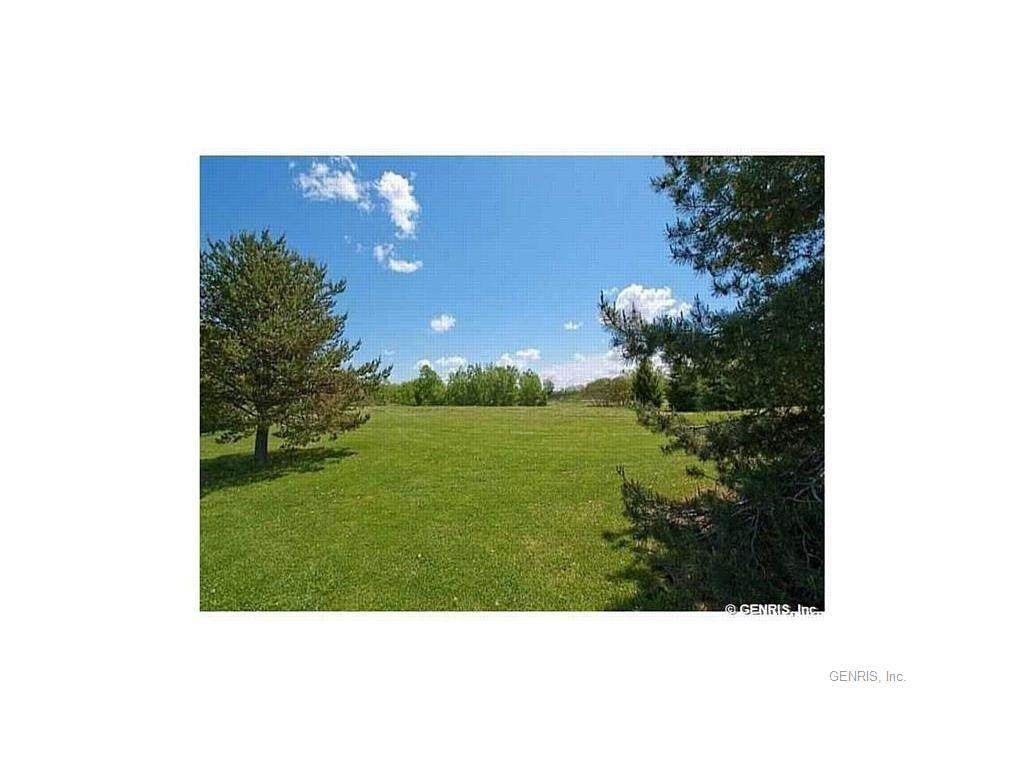 6850 Boughton Hill Road - Photo 1