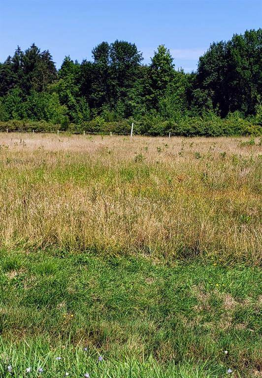 Lot  2 Seeley Road, Williamson, NY 14589 (MLS #R1284422) :: Robert PiazzaPalotto Sold Team