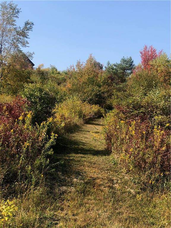 0 Swain Hill Road, Grove, NY 14884 (MLS #R1294364) :: BridgeView Real Estate Services