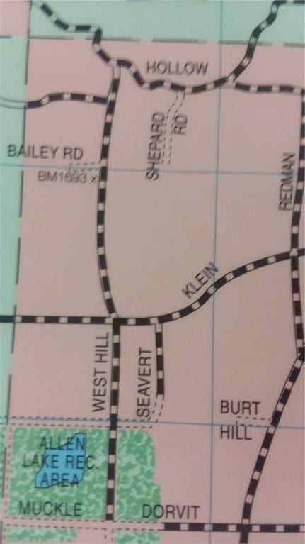 5602 Klein Road, Allen, NY 14735 (MLS #R1309529) :: TLC Real Estate LLC