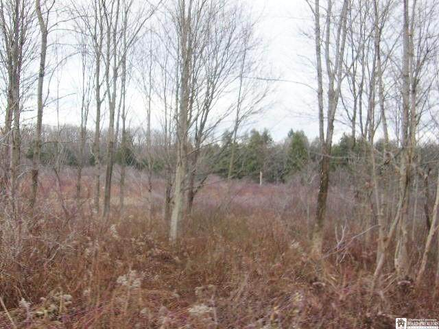 0000 James Rd., Stockton, NY 14718 (MLS #R1309649) :: BridgeView Real Estate Services