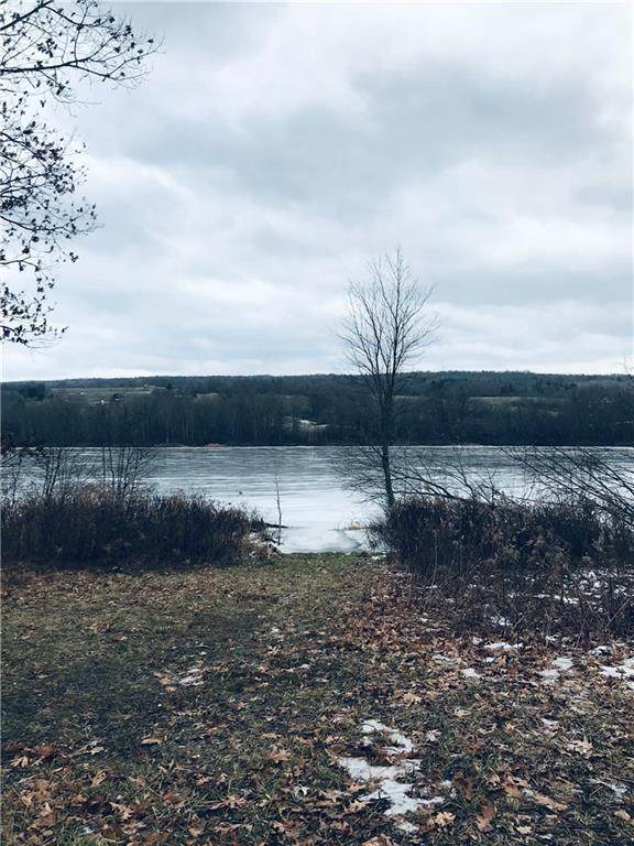 0000 State Route 226, Tyrone, NY 14891 (MLS #R1314799) :: TLC Real Estate LLC