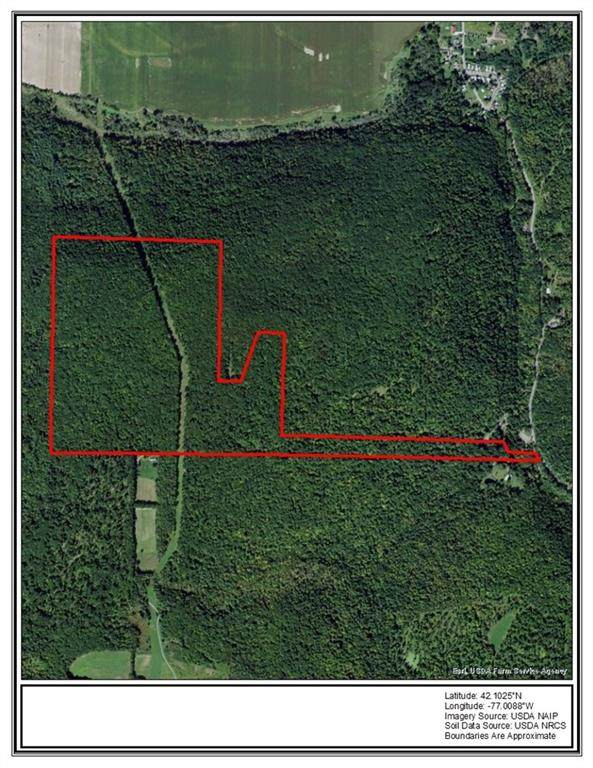 0 Brown Hollow Road, Corning-Town, NY 14830 (MLS #R1323431) :: Thousand Islands Realty