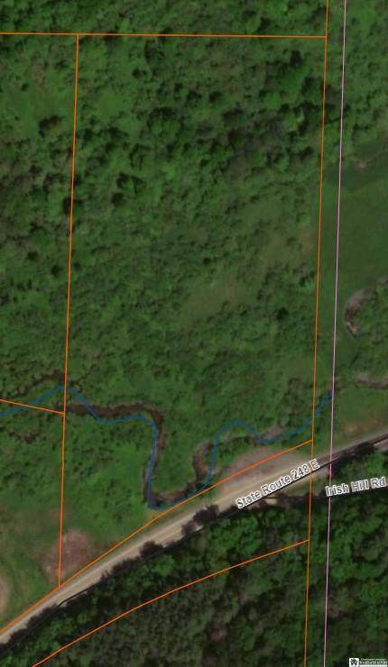 0 State Route 248, Independence, NY 14877 (MLS #R1326640) :: Avant Realty