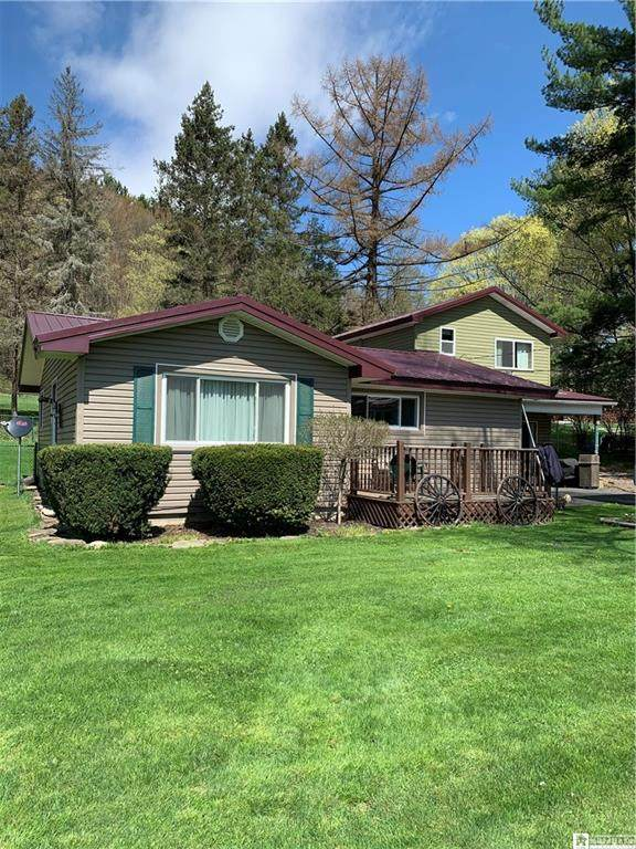 698 W Nys Rt 394, Poland, NY 14747 (MLS #R1331190) :: BridgeView Real Estate Services