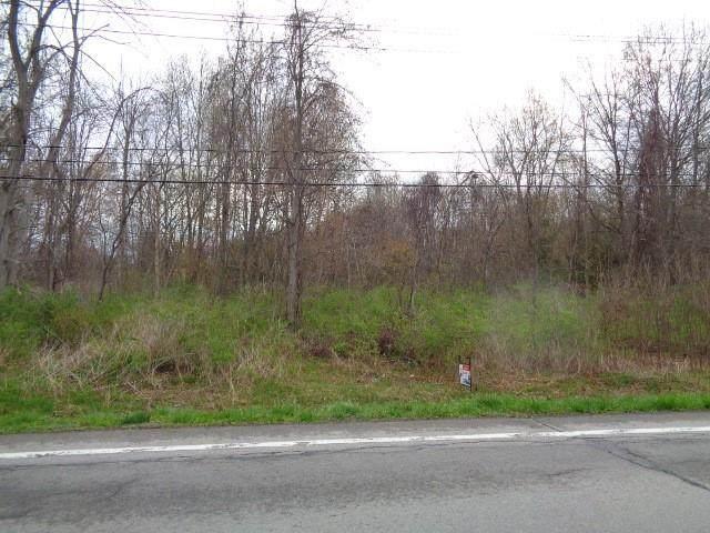 2624 Roosevelt Highway, Hamlin, NY 14464 (MLS #R1332178) :: Robert PiazzaPalotto Sold Team