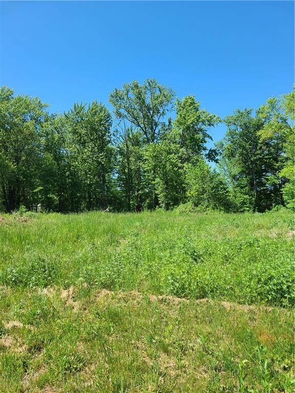 1093 Bear Creek Circle, Webster, NY 14580 (MLS #R1338652) :: Robert PiazzaPalotto Sold Team